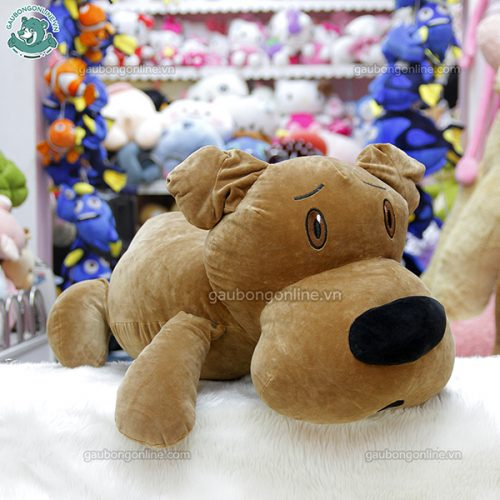 Chó Bông Đầu To