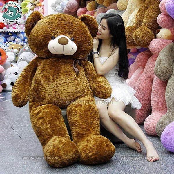 Gấu bông Teddy nâu