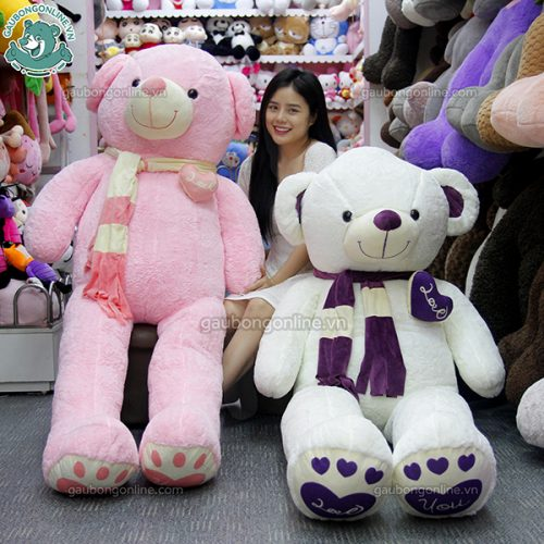 Gấu Bông Teddy Khăn Tim Màu