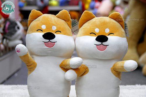 Chó Bông Akita Dài