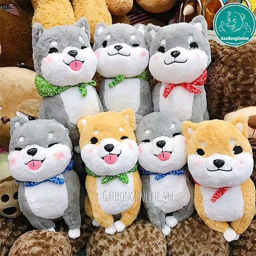 chú chó bông xù Nhật Bản