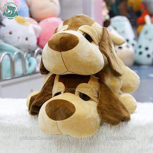 Chó Bông Mắt Lồi