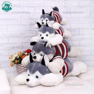 Chó Bông ALASKA