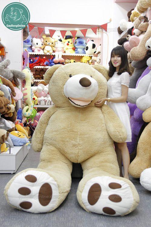 Gấu Bông Teddy Ted Bự
