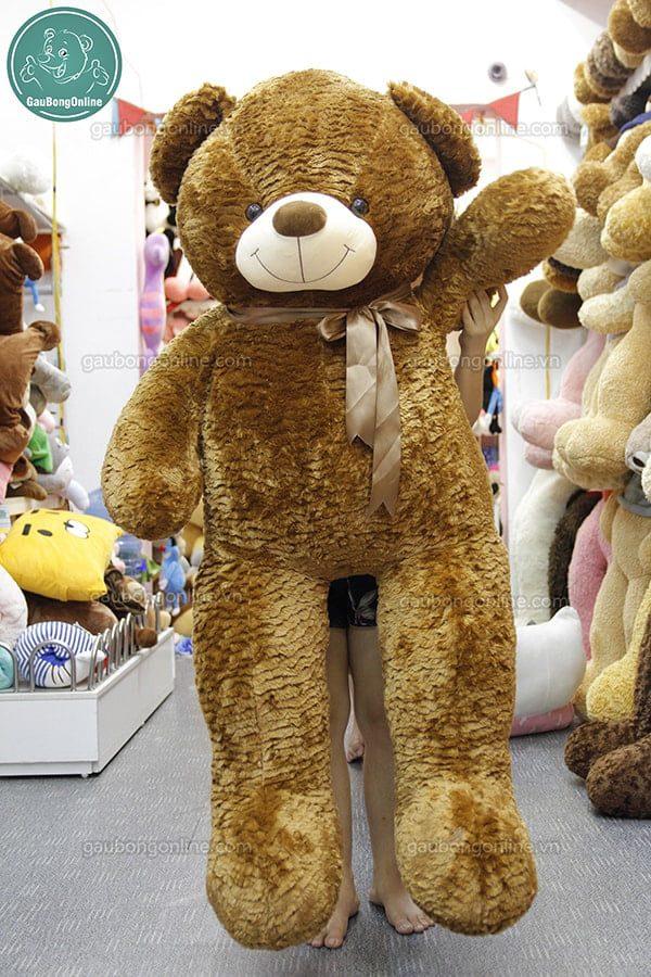 gấu bông Teddy nâu 1m7