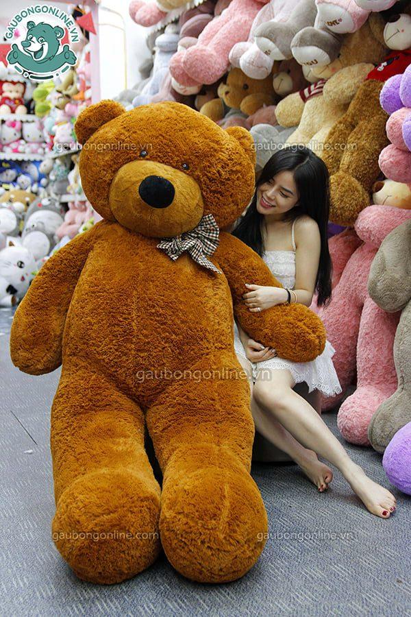 Gấu Bông Teddy Nâu Nhập