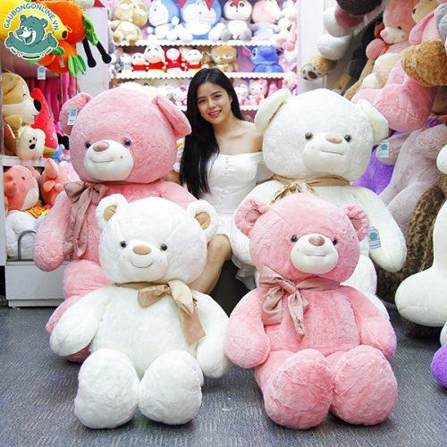 Gấu Bông Teddy Nơ Lụa
