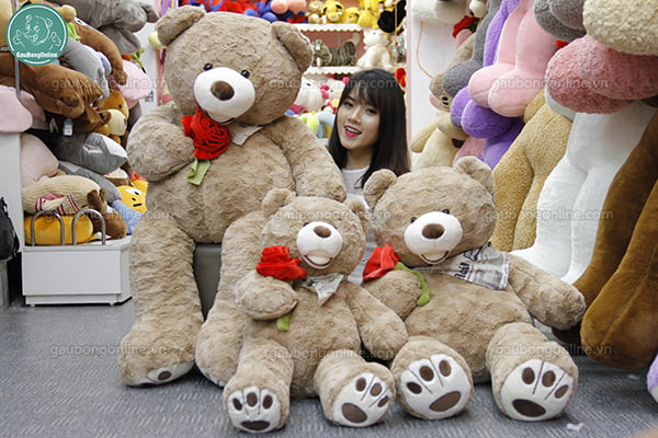 Gấu Bông Teddy Ôm Hoa