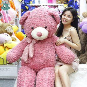 Gấu Bông Teddy Xù