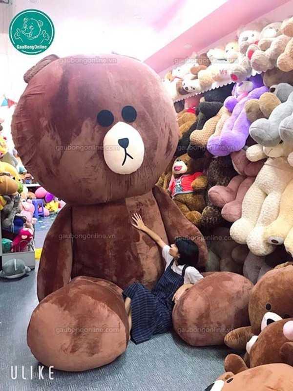 gấu brown bự
