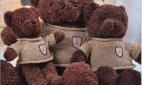 Gấu teddy áo len cao cấp