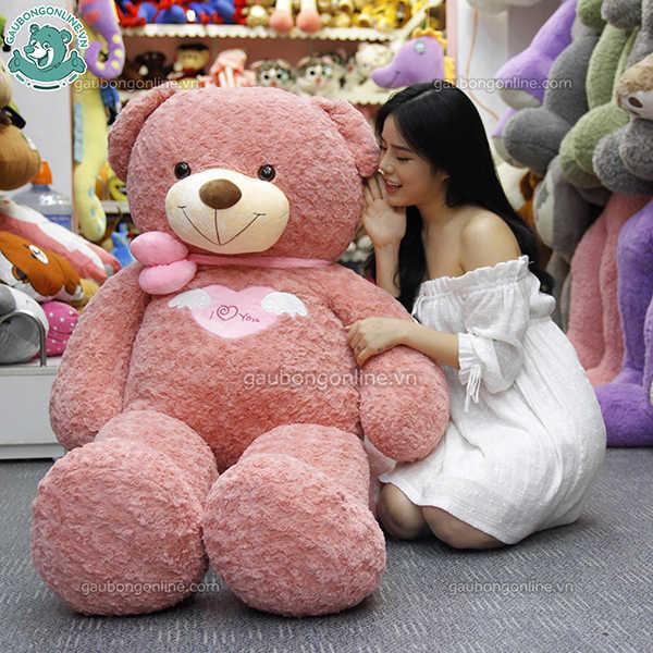 teddy angel hồng