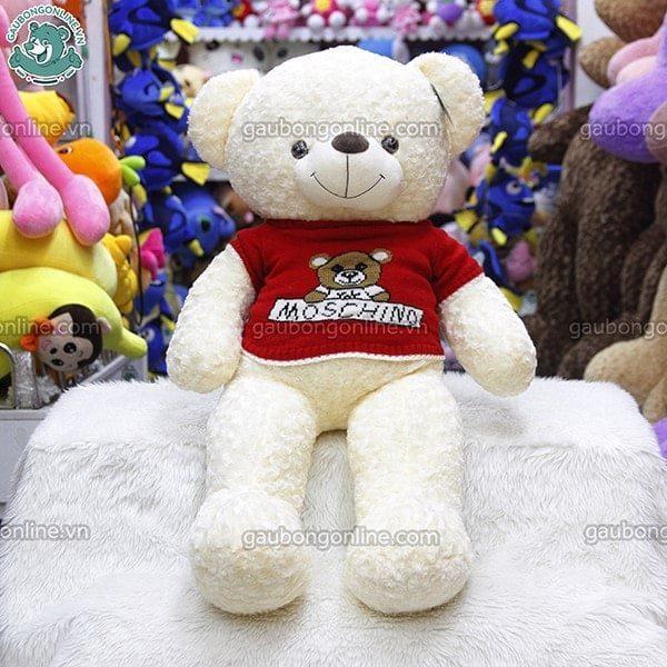 teddy áo moschino