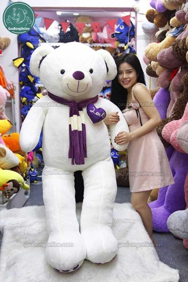 Teddy khăn tim màu
