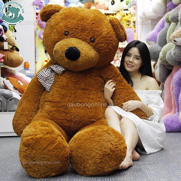gấu teddy nâu nhập 2m