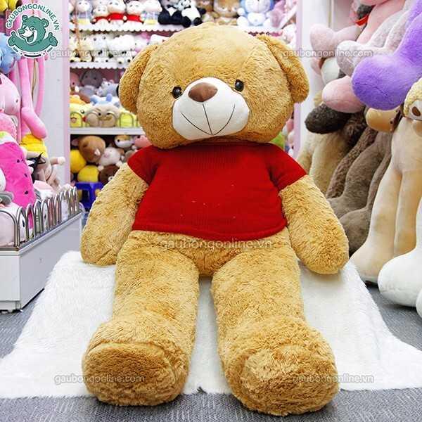 Teddy nâu áo len