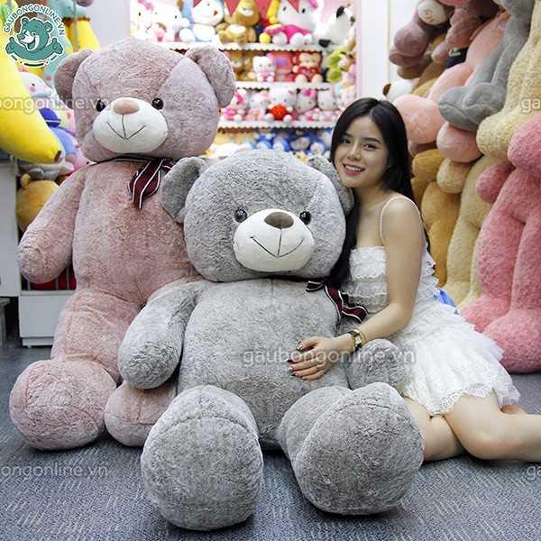 teddy nhung 1m6