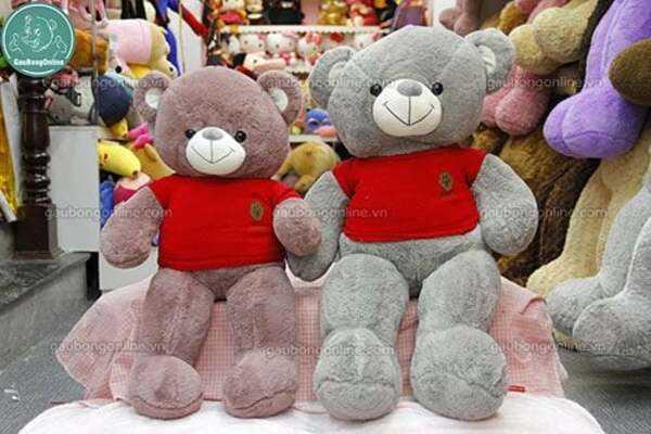 gấu teddy áo nhung len