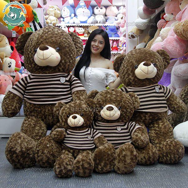 Gấu Teddy socola và gấu Teddy logo Baby