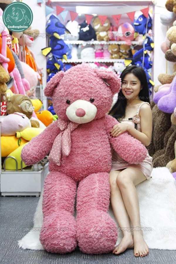 gấu bông teddy xù 1m5