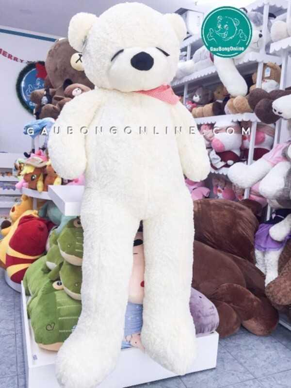 Gấu bông teddy ngủ