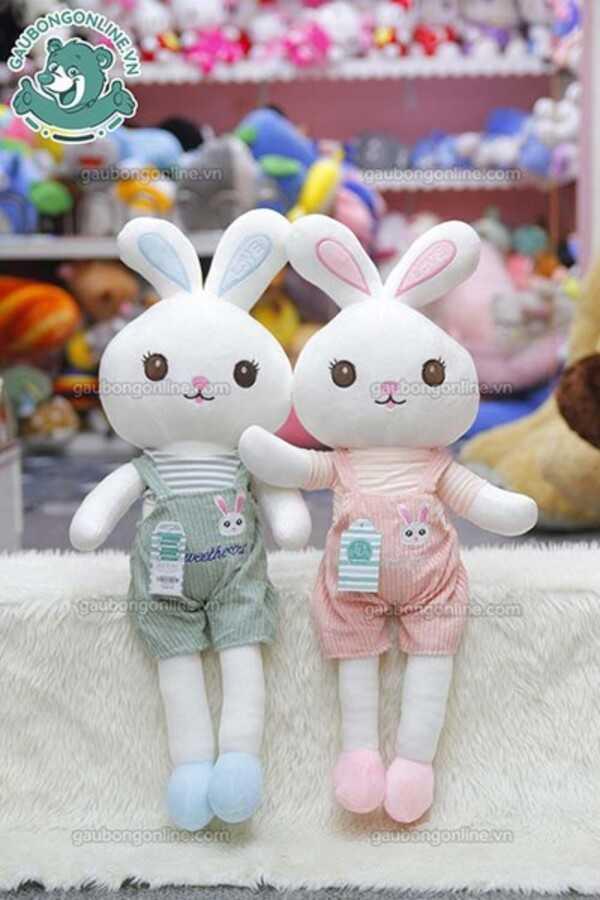 Thỏ đôi chân dài