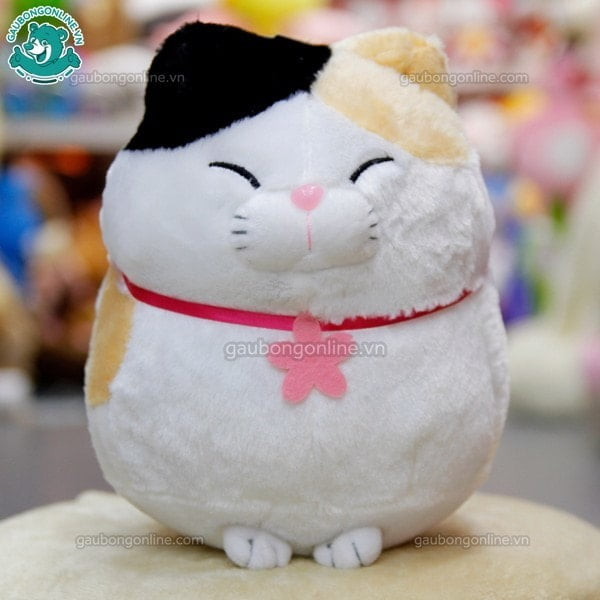 Mèo bông Amuse tam thể