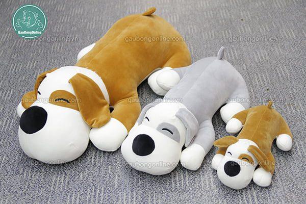 Chó Bông Mắt Đốm Mềm