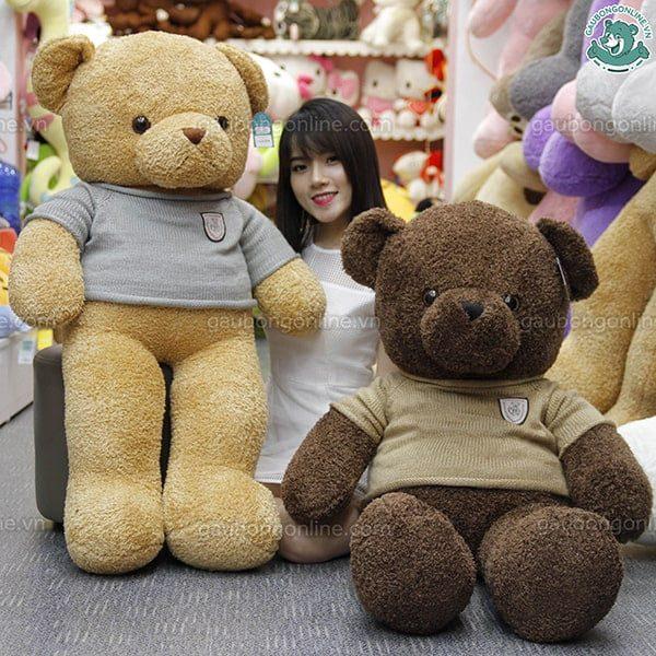 Gấu Teddy đại bự