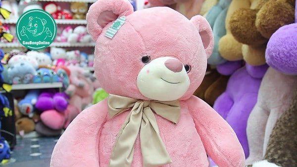 mua gấu bông giá sỉ tại Gấu bông online