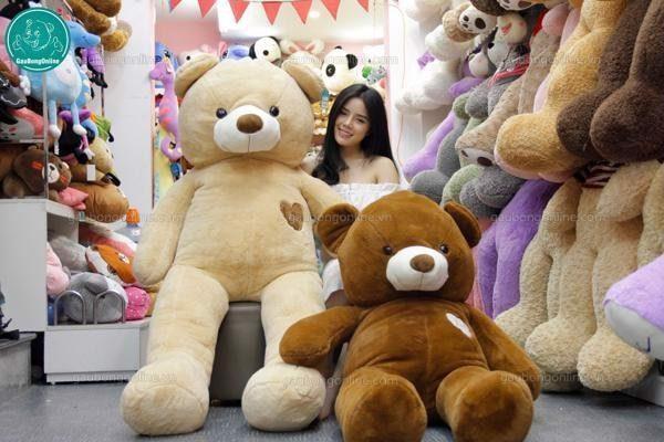 Gấu Teddy 1m8