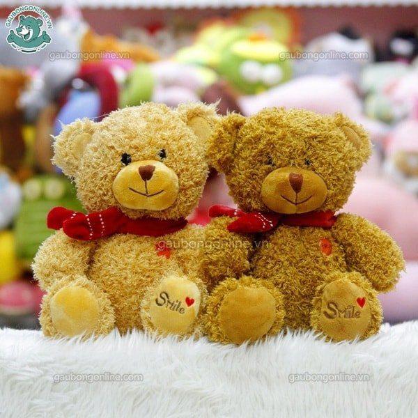 Gấu Teddy nhỏ