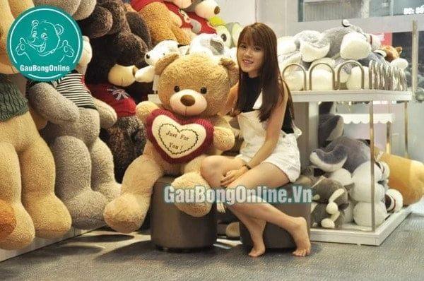 Gấu bông 50cm