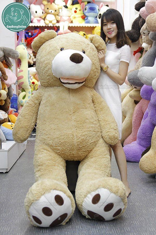 Gấu Teddy Ted bự