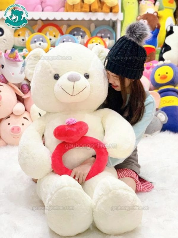 gấu teddy to
