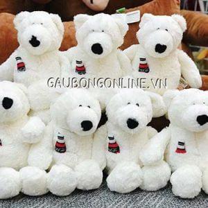 Gấu Bông Trắng Nici
