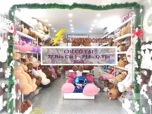 shop gấu teddy