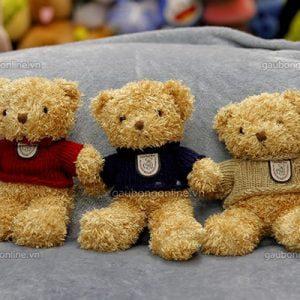 Gấu Bông Teddy Nhỏ