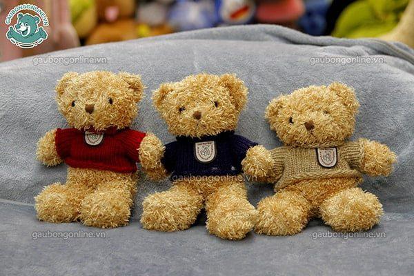 Gấu Teddy Head nhỏ