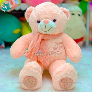 Teddy Khăn Cầu Vồng