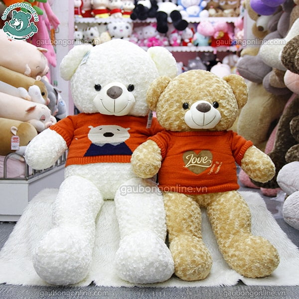 teddy len lông xoăn winter