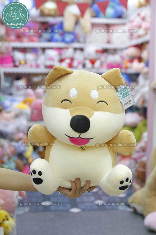 Chó Shiba Chuông