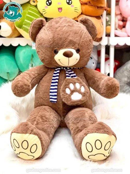 Teddy Khăn Kẻ Tim Gấu