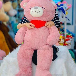 Gấu Bông Teddy Khăn Ngủ