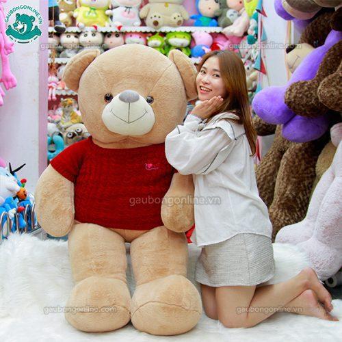Gấu Bông Teddy Nhung Áo Len Đại