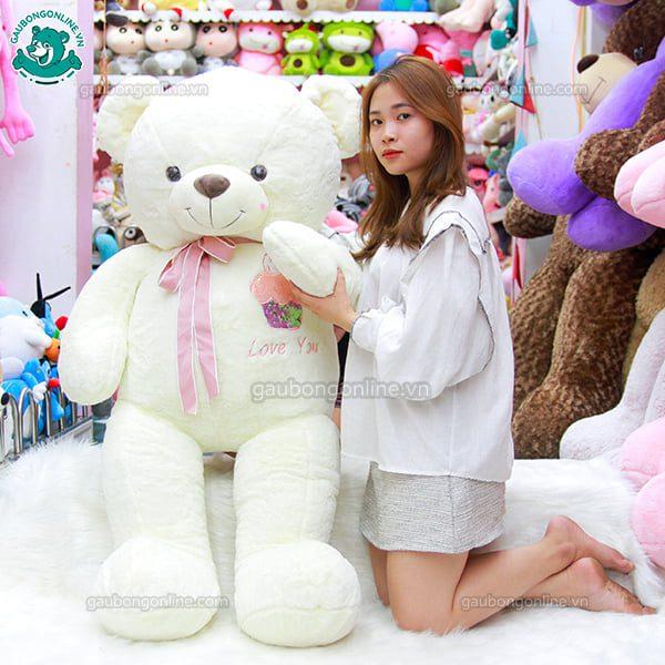 Gấu Bông Teddy Bánh Kem