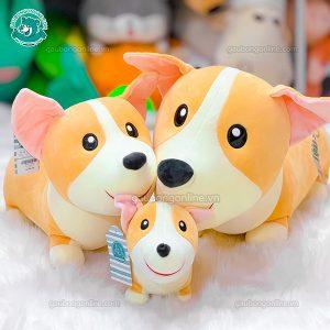 Chó Corgi Bông Đứng