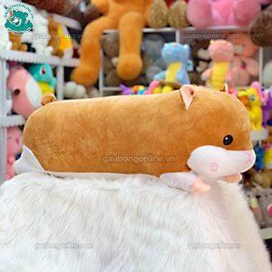 Chuột Hamster Bông Nằm