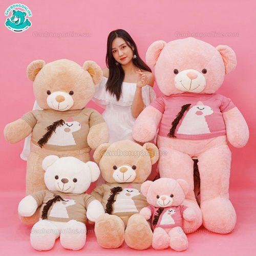 Teddy Áo Kì Lân