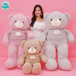 Gấu Bông Teddy Áo Len Mây ILU